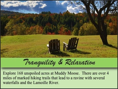 Muddy Moose- Tranquil and Relaxing